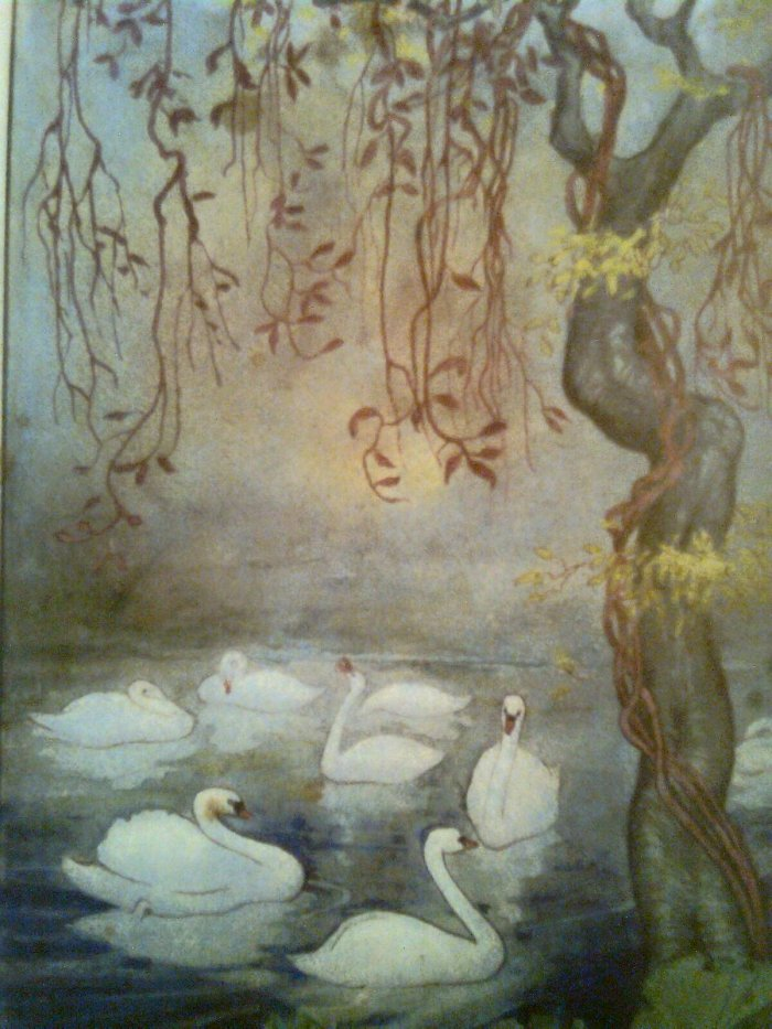 The Swan Maiden of Adrichem | HubPages